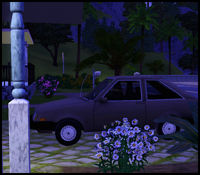 A cheap car parked in front of a sims house